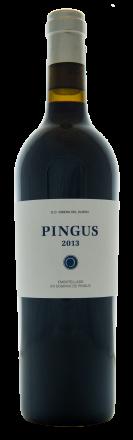 PINGUS - 2015